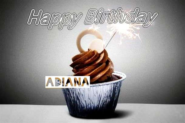 Adiana Cakes
