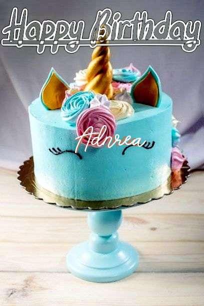 Adnrea Cakes