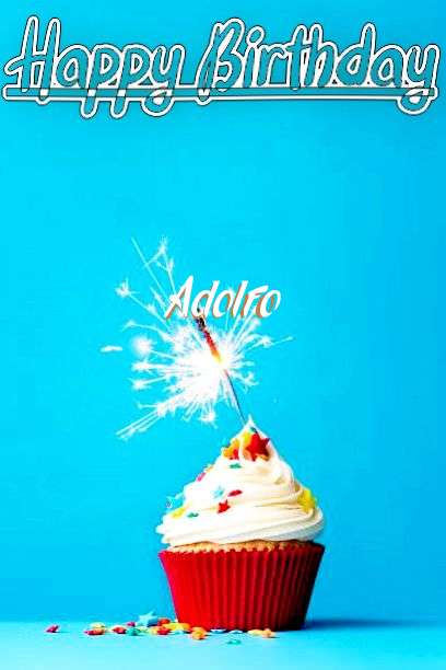 Wish Adolfo