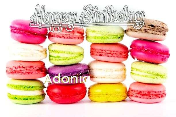 Happy Birthday to You Adonia
