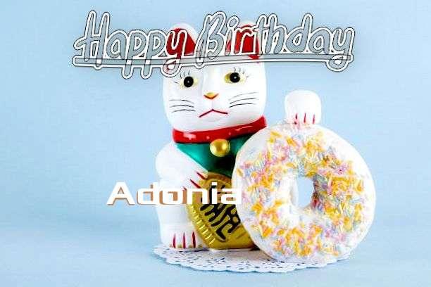 Wish Adonia