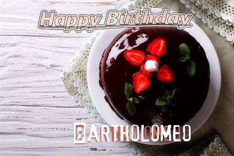 Bartholomeo Cakes