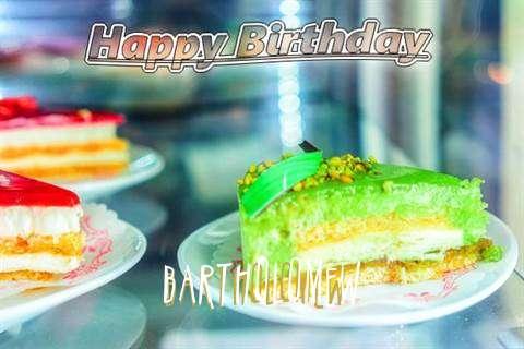 Bartholomew Birthday Celebration
