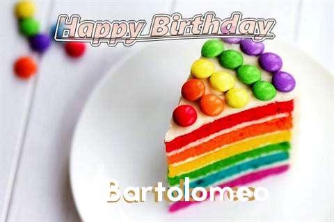 Bartolomeo Birthday Celebration