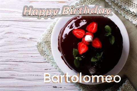 Bartolomeo Cakes
