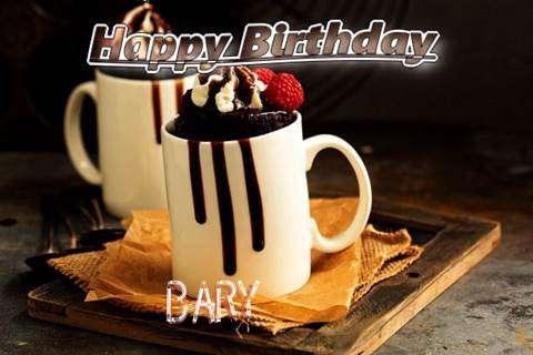 Bary Birthday Celebration