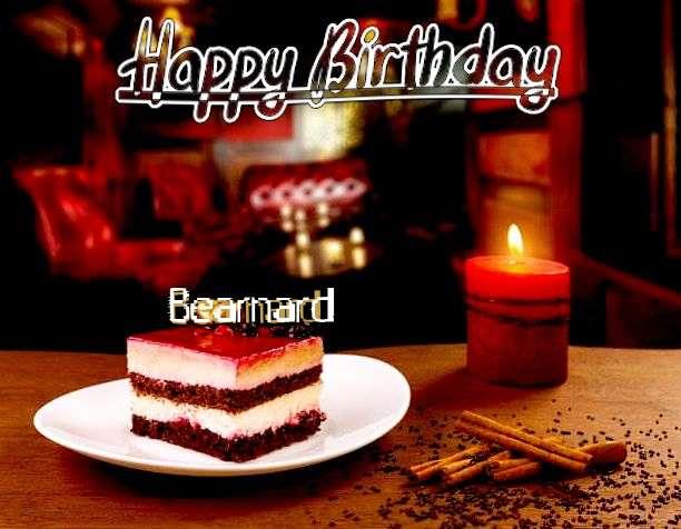 Happy Birthday Bearnard Cake Image