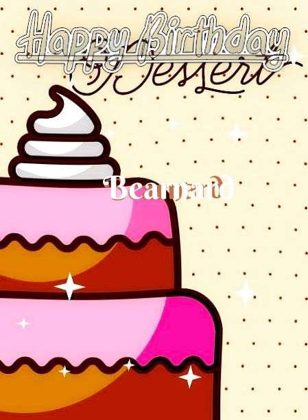 Bearnard Cakes