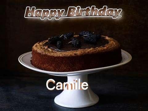 Camile Birthday Celebration