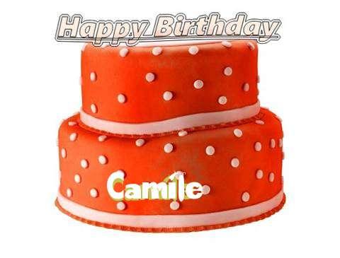 Happy Birthday Cake for Camile