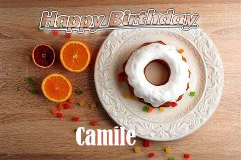 Camile Cakes