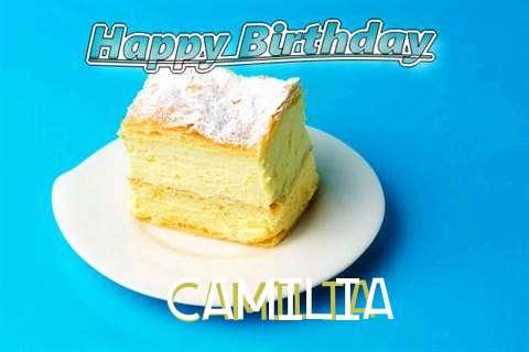 Happy Birthday Camilia Cake Image