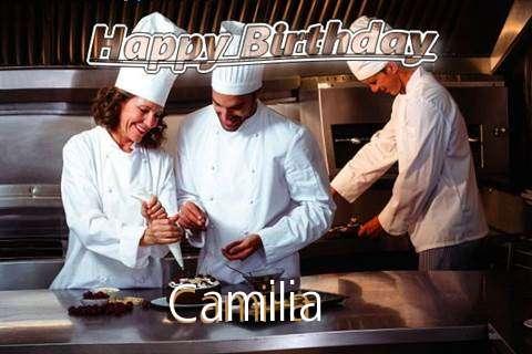 Happy Birthday Cake for Camilia