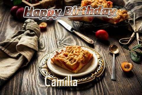 Camilla Cakes