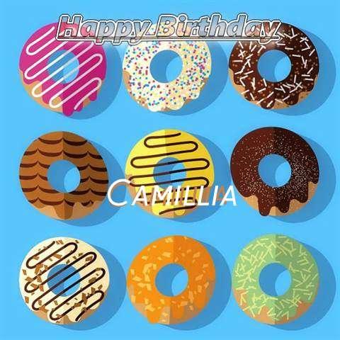 Happy Birthday Camillia Cake Image