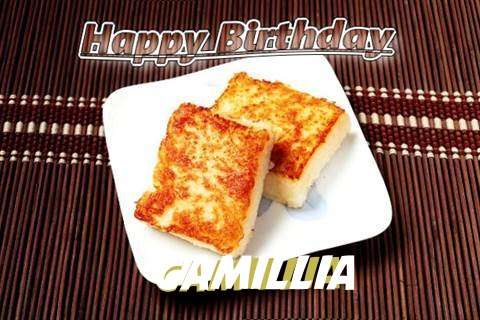 Birthday Images for Camillia