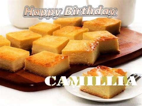 Happy Birthday to You Camillia