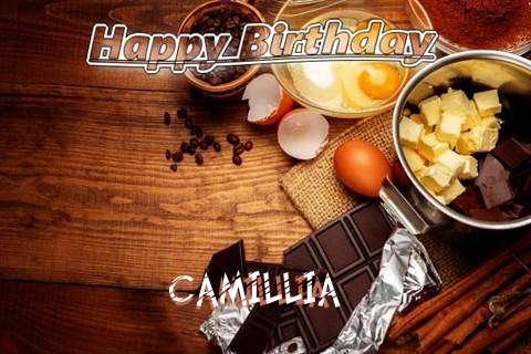 Wish Camillia