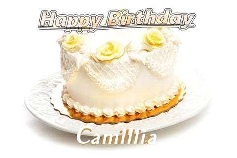 Happy Birthday Cake for Camillia