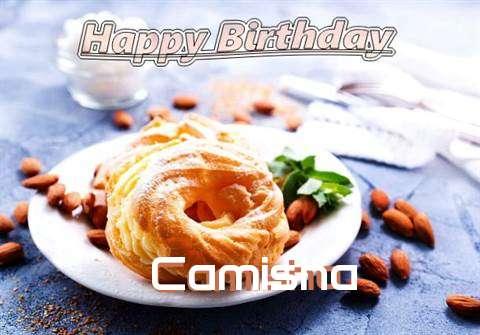Camisha Cakes