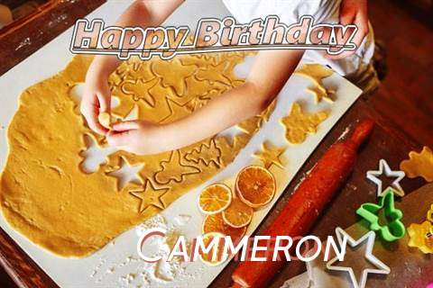 Cammeron Birthday Celebration