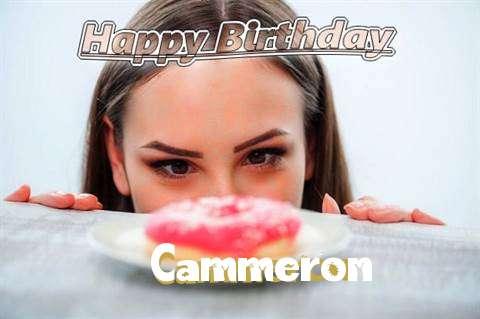 Cammeron Cakes