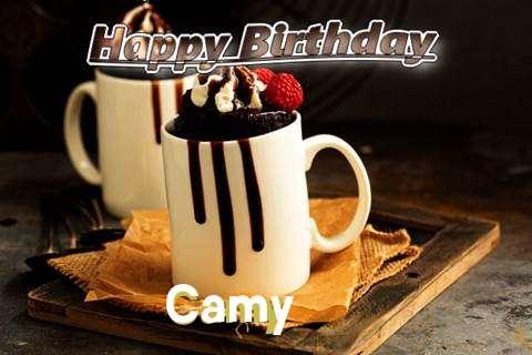 Camy Birthday Celebration