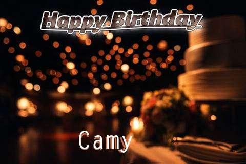 Camy Cakes