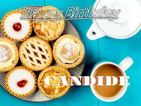 Happy Birthday Candide