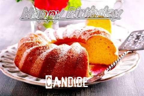 Candide Birthday Celebration