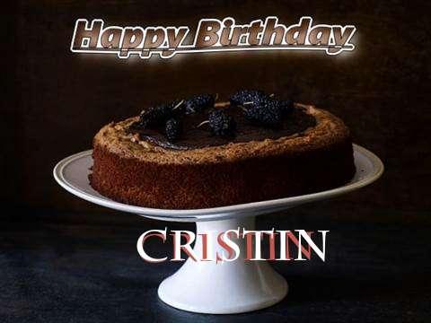Cristin Birthday Celebration
