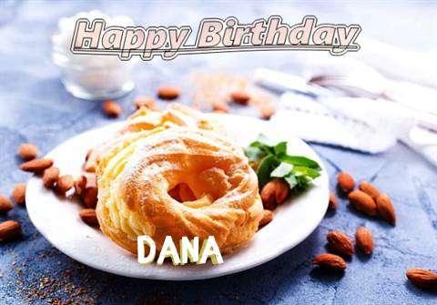 Dana Cakes