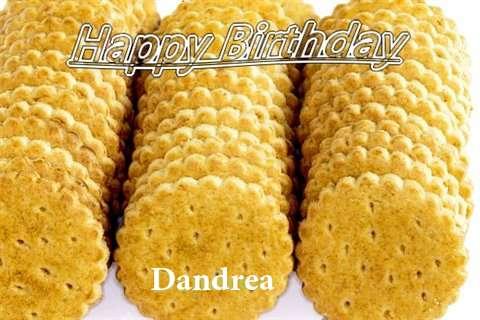 Dandrea Cakes