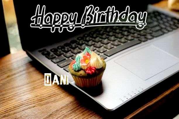 Happy Birthday Wishes for Dani