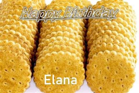 Elana Cakes