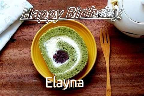 Elayna Birthday Celebration