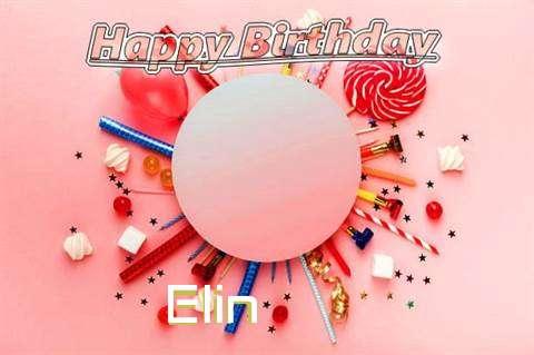 Elin Cakes