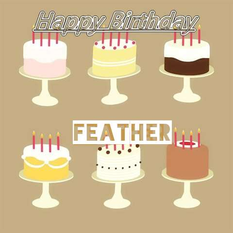 Feather Birthday Celebration