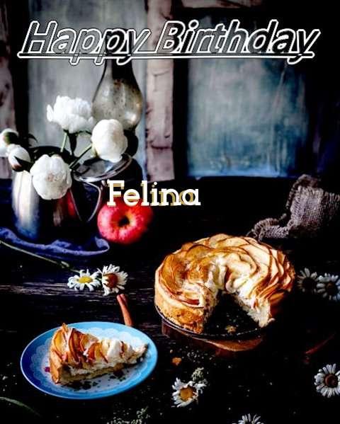 Happy Birthday Felina Cake Image