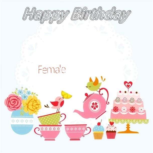 Happy Birthday Wishes for Female