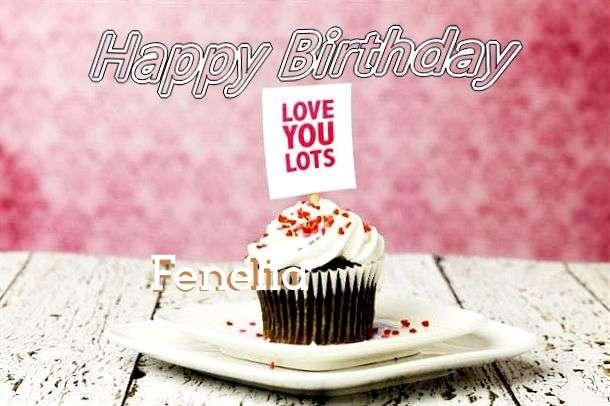 Happy Birthday Wishes for Fenelia
