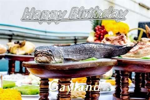 Gayland Birthday Celebration