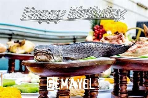 Gemayel Birthday Celebration