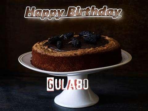Gulabo Birthday Celebration