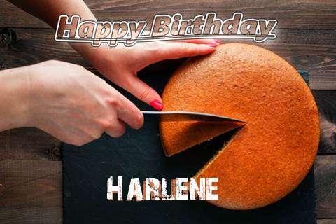 Happy Birthday to You Harlene