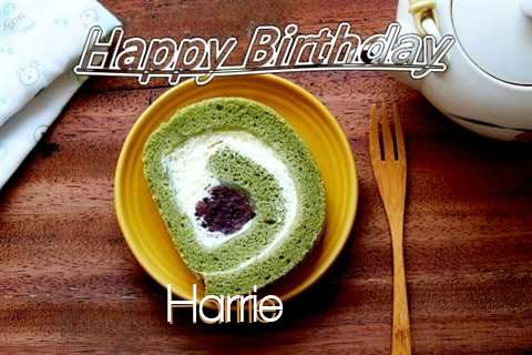 Harrie Birthday Celebration
