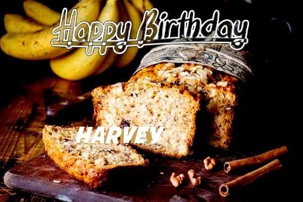 Happy Birthday Cake for Harvey