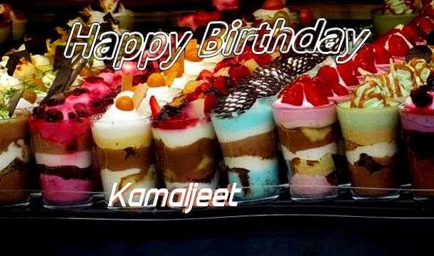 Kamaljeet Birthday Celebration