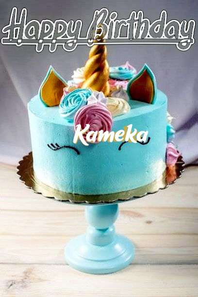 Kameka Cakes