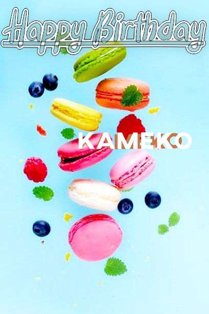 Happy Birthday Kameko Cake Image